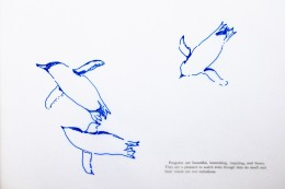 .–. / .- / .- (penguin anticipatory archive) (Perdita Phillips, mixed media drawings and digital prints, 2013) http://www.perditaphillips.com/portfolio/16-1-1-penguin-anticipatory-archive/